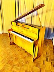 Klavier Flügel Schimmel Pianoforte Mod