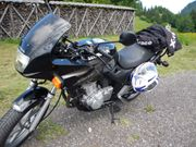 Suche für Honda CB 500
