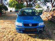 VW POLO BJ 2001 Kleinwagen