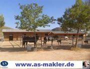 Sonderpreis Pferderanch mit 2 Häuser