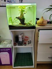 Nano Aquarium Fluval 57L