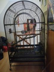Großer Papageienkäfig