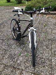 Centurion Herren Cross Bike RH