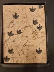 Dinosaurier Abdruck Platte