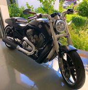 Harley-Davidson VROD MUSCLE VRSCF