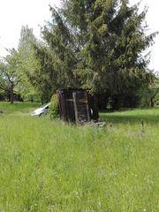 Suche Grünland Weidefläche auch Pacht