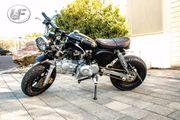 Skyteam StreetFighert 125cc Skymini125cc www