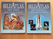 Bildatlas Weltall - Tiere Wissen Sachbuch