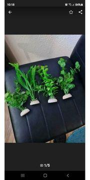 Wasserpflanzen Kunststoff