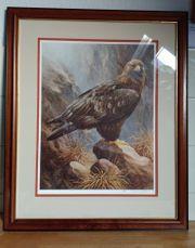 Raymond Watson - The Golden Eagle