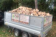 Nachhaltiges Brennholz aus der Region