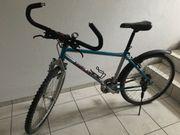 Damen-Mountainbike