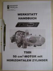 Werkstatthandbuch Handbuch für Peugeot Jetforce-50