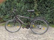 Herren-Trekking-Fahrrad 28 Zoll