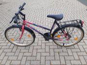 26 Zoll Damen Mädchen Fahrrad