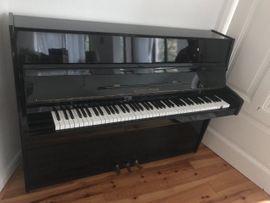 Tasteninstrumente - Klavier im Südviertel zu verkaufen