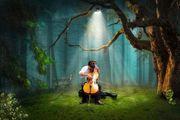Cellist in gesucht