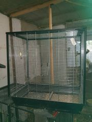 Sittich Käfig