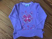 Bob der Bär lilanes Sweatshirt