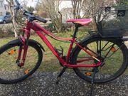 Mountainbike MTB Cube berry pink