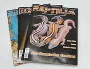 REPTILIA Zeitschriften 3 Stück NEU