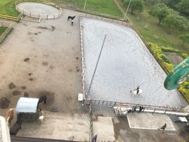 Pferdeboxen, Stellplätze - Einstellplatz im Freilaufstall