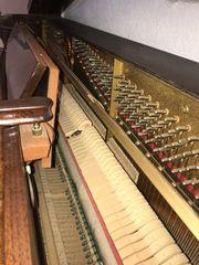 Klavier Marke Schimmel Halbflügel