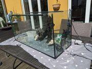 180 Liter Aquarium mit Zubehör