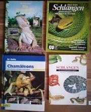 47 Verschiedene Tierbücher