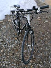 Herren Trekking E-Bike
