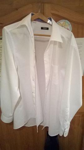 Herrenbekleidung - WALBUSCH Hemden zu verkaufen