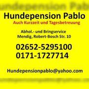Hundepension Pablo in Mendig