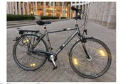 Pegasus hochwertiges Alu- Cityrad Trekkingrad