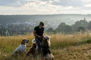 Familiäre liebevolle Hundepension - Plätze frei -