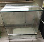 Terrarium aus Glas 80 x