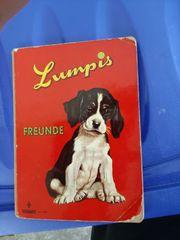 Kinderbuch Lumpis Freunde
