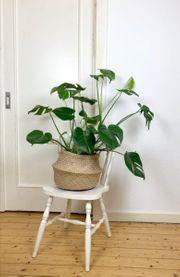 Stuhl aus Holz mit gedrechselten
