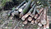 Verkaufe Brennholz Weich und Hart