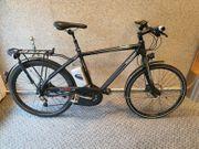 Raleigh Pedelec E-Bike 11 Gang