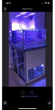 Aquarium Meerwasser Unterschrank Blickfang Sonderanfertigung