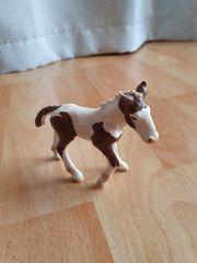 Schleich Pferd Fohlen