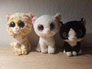 Glubschi Kuscheltier Katzen