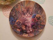 Wandteller Katzenteller