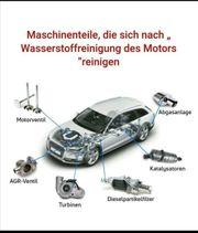DPF Katalysator und Motor Innen