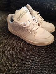 Adidas Sneaker in weiß Gr