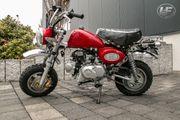 SKYTEAM Skymini 50cc EURO4 Skyteam