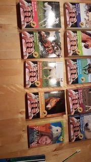 Buchpaket für pferdebegeisterte Mädchen