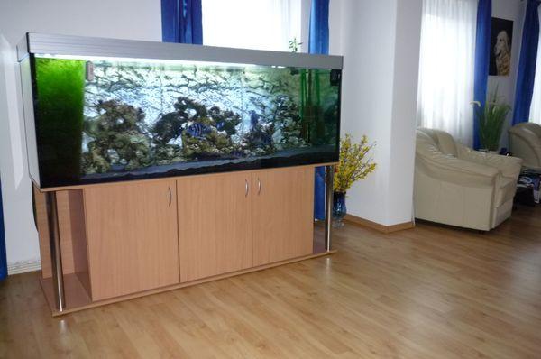 800l Aquarium Set