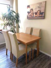Tisch Stuhl Sitzgruppe Essgruppe Wohnzimmer