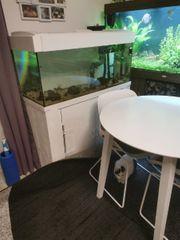 meerwasser aquarium 185 Liter